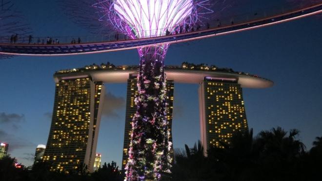 Singapur (9)